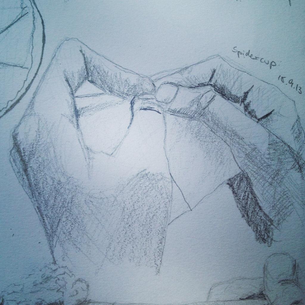 Spidercup