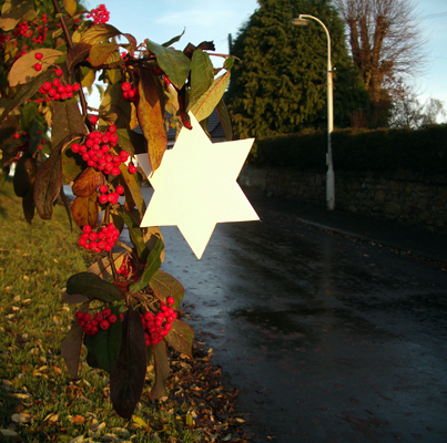 7.Dec - Richard Smith, Saline, Fife