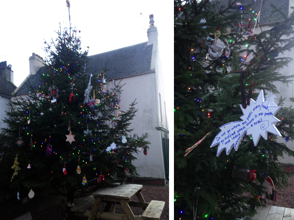 8. Dec - Lucy Beltrán (Fife Architects), Crail Christmas Tree, Crail, Fife, Scotland