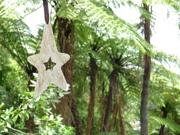 17.Dec: Ria Crawford, Ponga Tree Bush Walk, Te Puna, New Zealand -